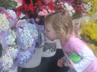 dylan-smelling-flowers-1.jpg