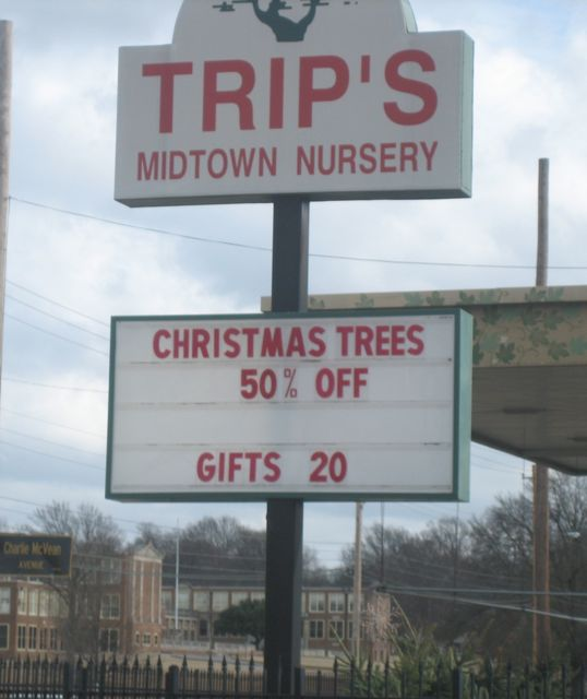 christmas-trees-half-price