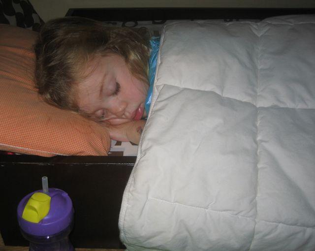 summer sleeping