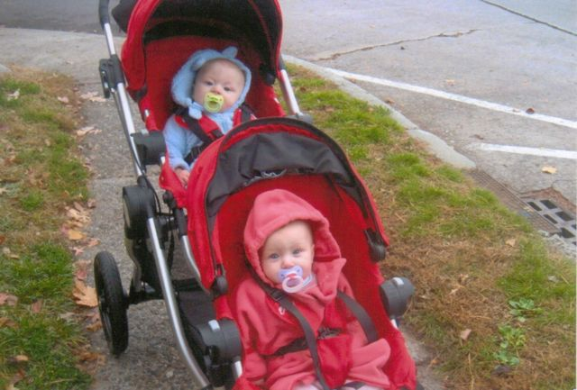 Chase and harlowe as babies 2010